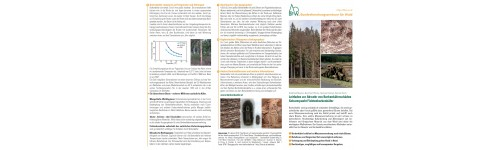 Merkblätter - Waldschutz