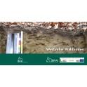 Diverse 54 / Wertvoller Waldboden