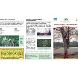 Merkblätter - Waldschutz 2004/2