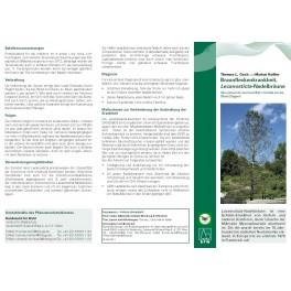 Merkblätter - Waldschutz 2011/1
