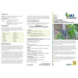Merkblätter - Waldschutz 2012/1